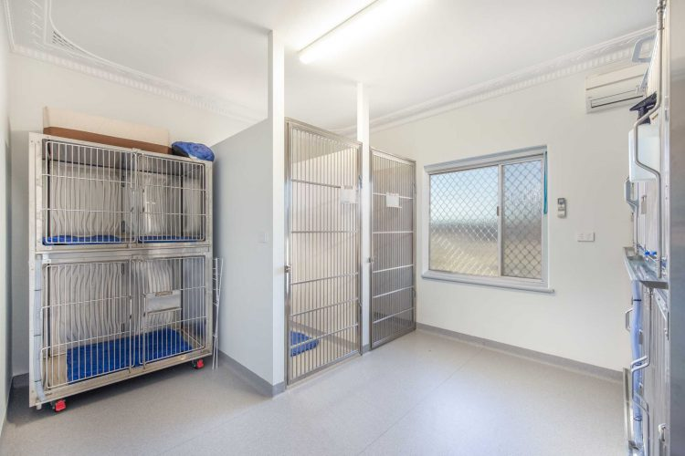 Pet cages collection